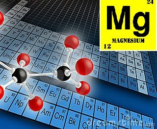 Nutrients and their impact on healthy plant growth –  Mg is for Magnesium
