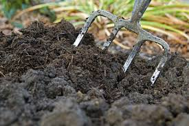 How to Create Stable Humus – Compost