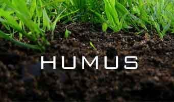 Drought and the importance of humus creation