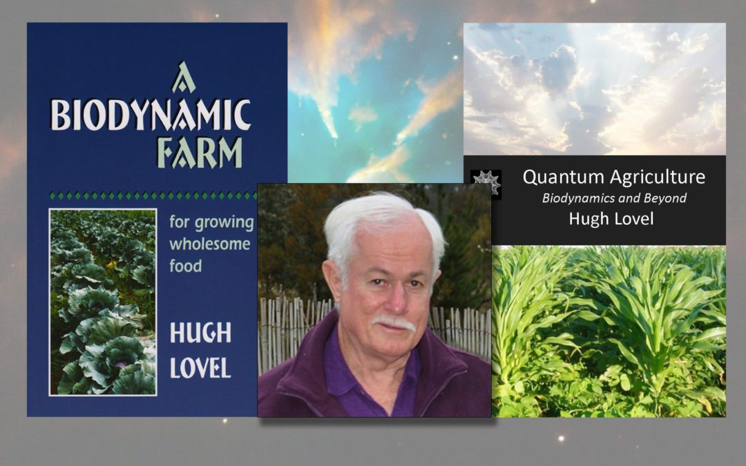 Hugh Lovel's Quantum Agriculture Workshop at Avondale